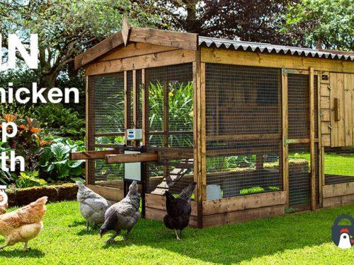 Win a Chicken Coop Worth £865