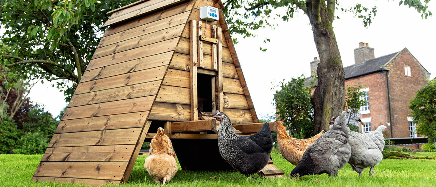 Chicken Ark House