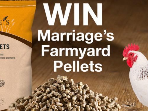 Win Marriage's Farmyard Pellets