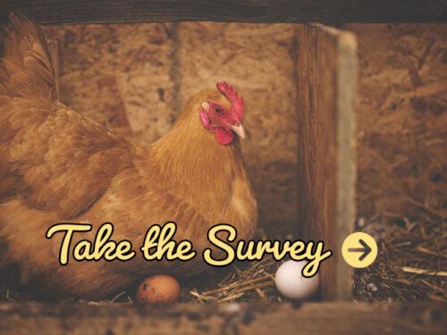 Chicken Ownership Survey